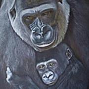 United - Western Lowland Gorillas Art Print