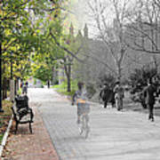 University Of Pennsylvania Walk Art Print