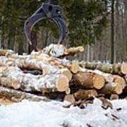 Unloading Firewood 3 Art Print