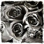 Bw Rose Bouquet 2 Art Print