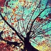 Untitled Tree Web Art Print