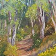 Uphill Path-batiquitos Art Print