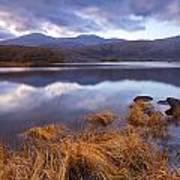 Upper Lake Killarney Art Print