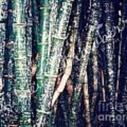 Urban Bamboo Art Print