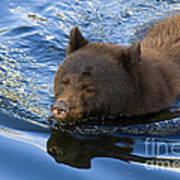 Ursa Mirrored Art Print