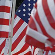 Usa Flags 01 Art Print