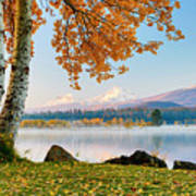 Usa, Oregon, Bend, Fall At Black Butte Art Print