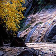 Utah - Zion National Park Virgin River 8 Art Print