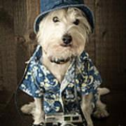 Vacation Dog Art Print