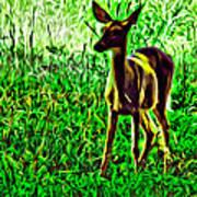 Valley Forge Deer Art Print