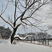 Valley Forge Winter 9 Art Print