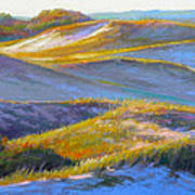 Valley Of The Dunes Print by Ed Chesnovitch