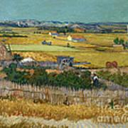 Van Gogh Wheatfield 1888 Art Print