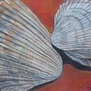 Van Hyning's Cockle Shells Art Print