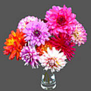 Vase Of Bright Dahlia Flowers Posterized Art Print