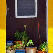Vases On The Doorway Art Print