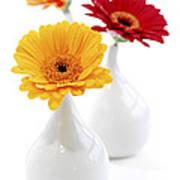 Vases With Gerbera Flowers Art Print