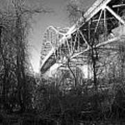 Vegetation Bridge Art Print