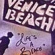 Venice Beach To Santa Monica Pier Art Print by Tony B Conscious