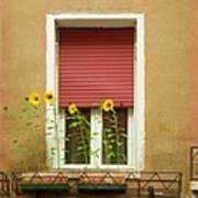 Venice Italy Yellow Flowers Red Shutter Art Print