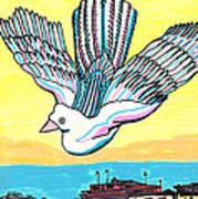 Venice Seagull Art Print by Don Koester