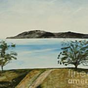 Ventura's Two Trees With Santa Cruz  Art Print