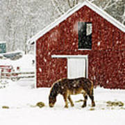 Vermont Christmas Eve Snowstorm Art Print