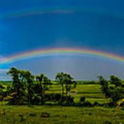 Vernon Marsh Double Rainbow Art Print by Randy Scherkenbach