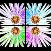 Vexel Flower Collage Art Print