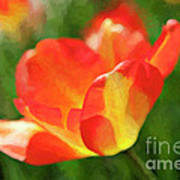 Vibrant Colorful Tulips Art Print