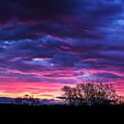 Vibrant Sunrise Art Print by Tim Buisman