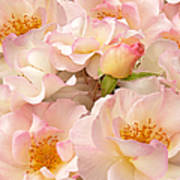 Victorian Pink Roses Bouquet Art Print