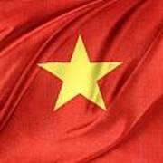 Vietnamese Flag Art Print