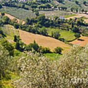 View At Montefalco Art Print