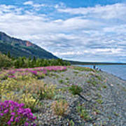 View Four Kluane Lake From Cottonwood Campground Near Destruction Bay-yk Art Print