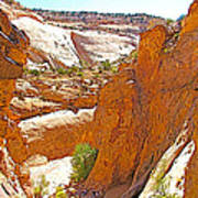 View From Above Capitol Gorge Pioneer Trail In Capitol Reef National Park-utah Art Print