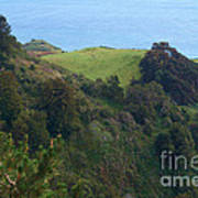 View From Nepenthe In Big Sur Art Print