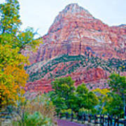 View From South Campground In Zion Np-ut Art Print