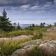 View From Top Of Cadilac Mountain In Acadia National Park Art Print