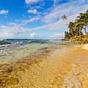 View Of Caribbean Coastline Art Print