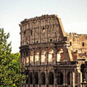 View Of Colosseum Art Print