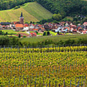View Of Rodern From The Vineyards Of Alsace Art Print
