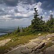 View On Top Of Cadilac Mountain In Acadia National Park Art Print