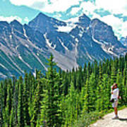 View On Trail To Lake Agnes In Banff Np-alberta Art Print
