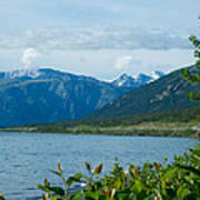 View One Kluane Lake From Cottonwood Campground Near Destruction Bay-yk   Art Print