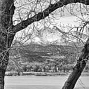 View Through The Trees To Longs Peak Bw Art Print