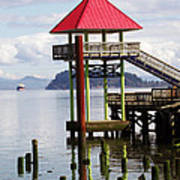 Viewing The Columbia River Art Print by Pamela Patch