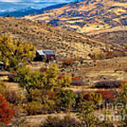 Viewing The Old Barn Art Print by Robert Bales