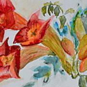 Vigne Provincial Art Print