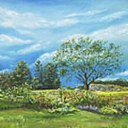 Village Garden Art Print